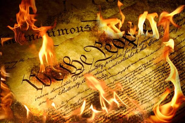 Constitution1