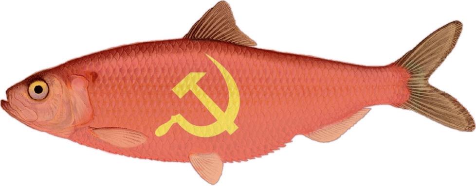 communism158
