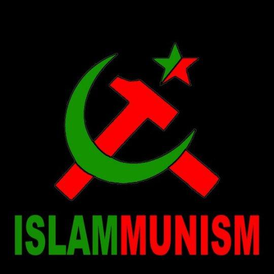 communism513