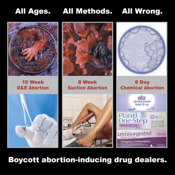 abortion25