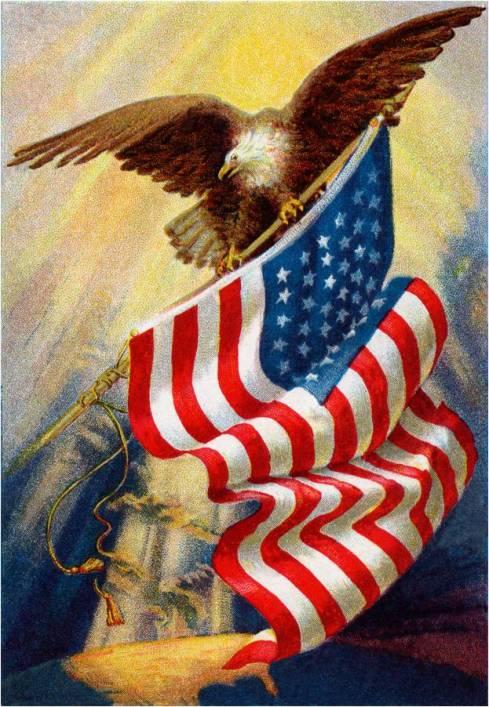 America1 (2)
